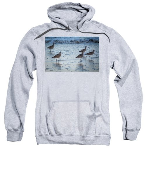 Beach Birds Sweatshirt