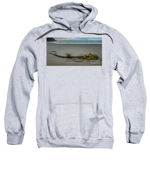 Beach Bull Kelp Laying Solo Sweatshirt