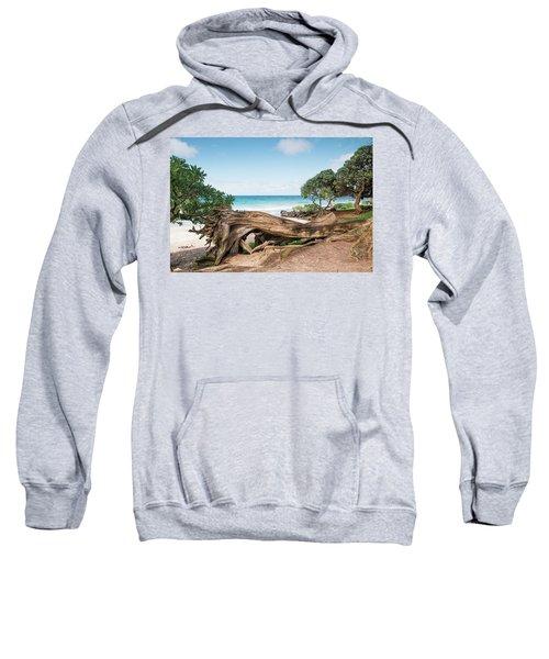 Beach Camping Sweatshirt