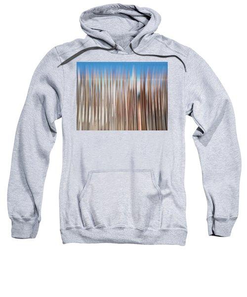 Beach Fence Sweatshirt