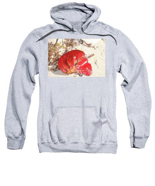 Beach Treasures 1 Sweatshirt