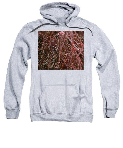 Beads Of Raindrops Sweatshirt