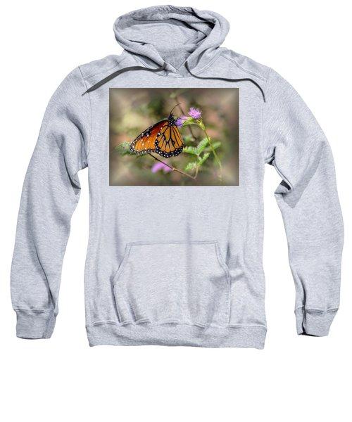 Beautiful Butterfly Sweatshirt