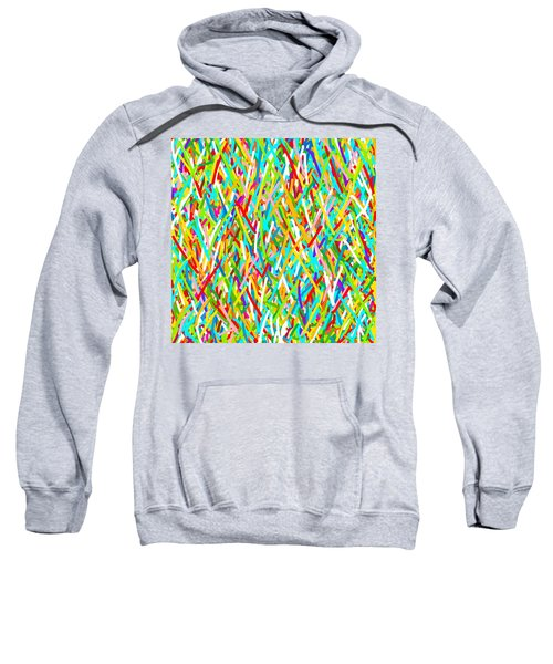 Beautiful Confusion Sweatshirt
