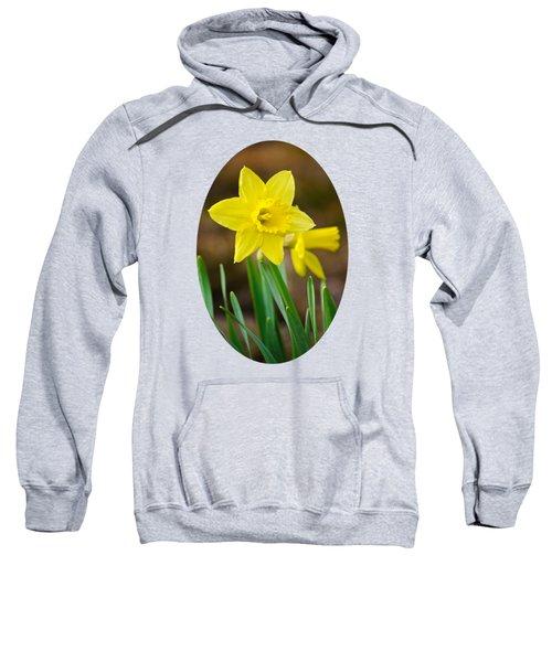 Beautiful Daffodil Flower Sweatshirt by Christina Rollo