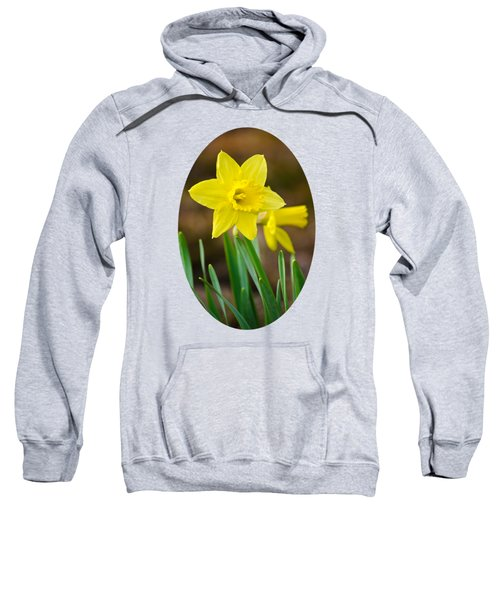 Beautiful Daffodil Flower Sweatshirt