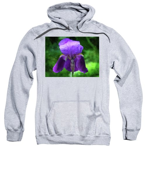 Beautiful Iris With Texture Sweatshirt