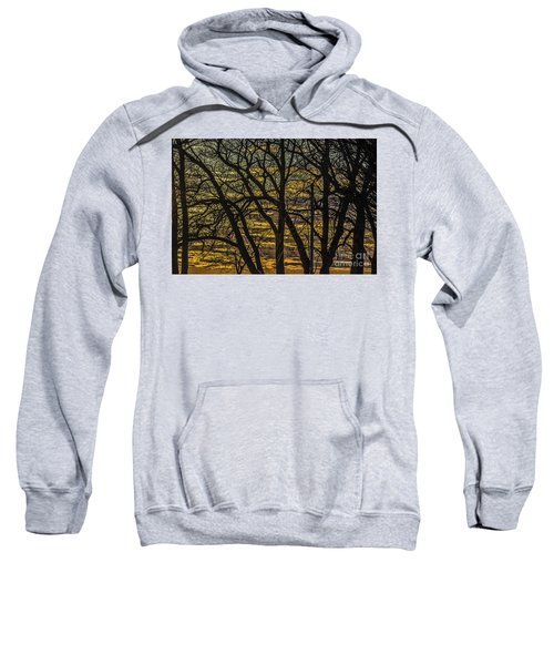 Beautiful Sunset Behind Bare Trees Sweatshirt