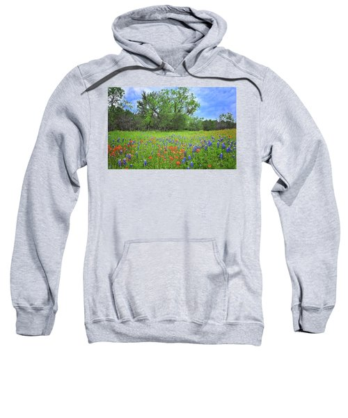 Beautiful Texas Spring Sweatshirt