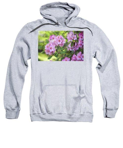 Beauty Of Pink Rhododendron Sweatshirt