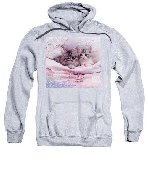 Bedtime Kitties Sweatshirt