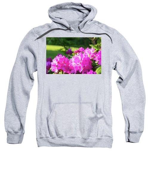 Bee Flying Over Catawba Rhododendron Sweatshirt