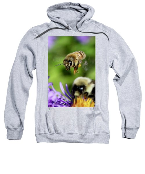 Bee In Flight  Sweatshirt
