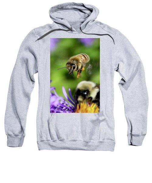 Bee In Flight  Sweatshirt