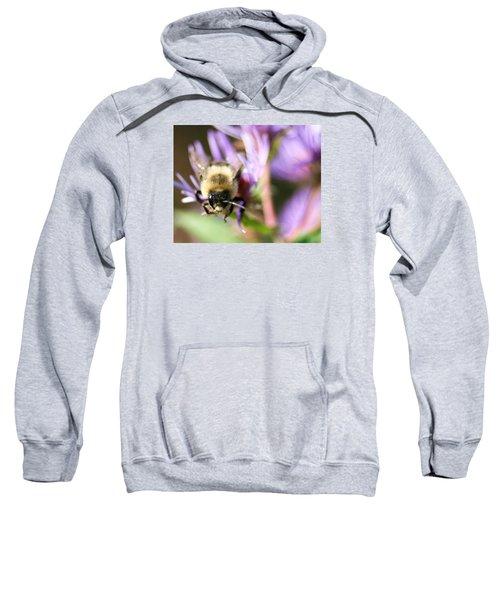 Bee Mustache Sweatshirt