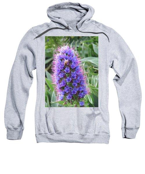 Bee On Blue Sweatshirt