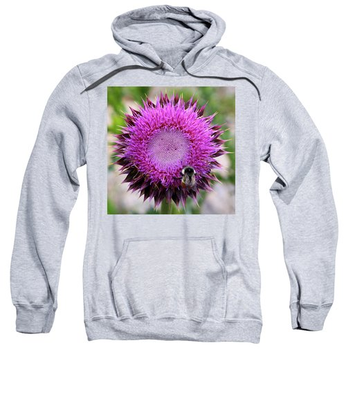 Bee On Thistle Sweatshirt
