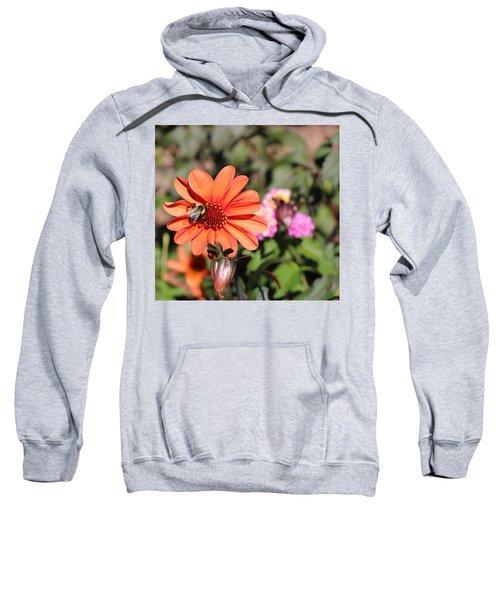 Bees-y Day Sweatshirt