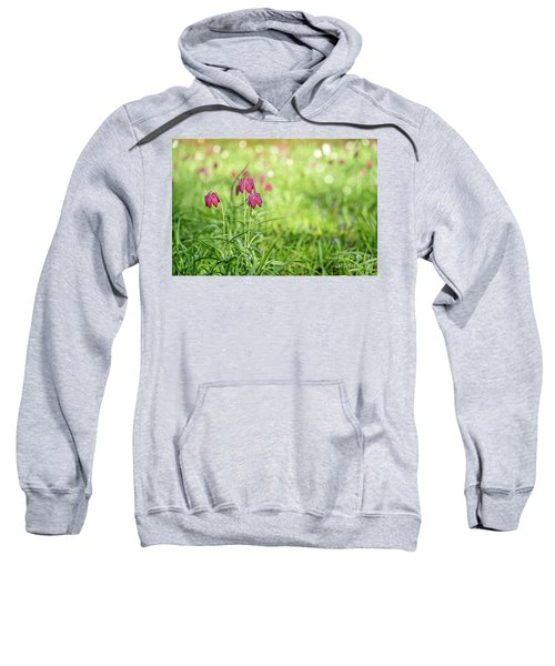 Bells Sweatshirt