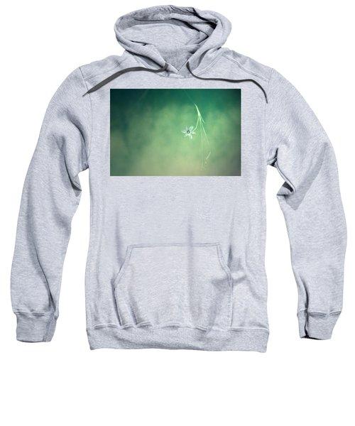 Below Summer  Sweatshirt