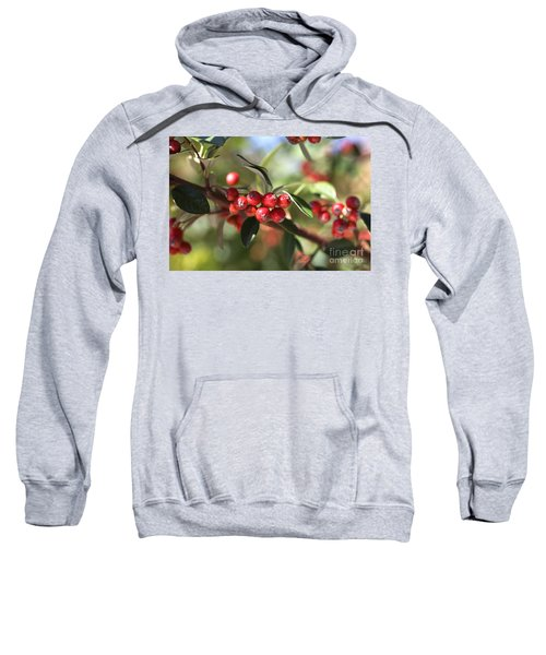 Berry Delight Sweatshirt