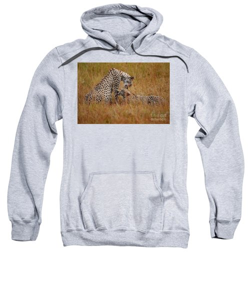 Best Of Friends Sweatshirt by Nichola Denny