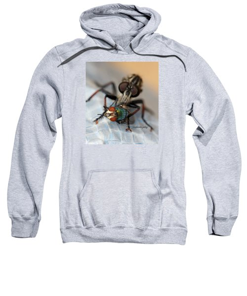 Bigger And Badder Sweatshirt