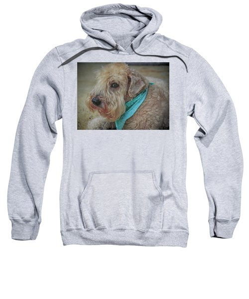 Binkley Sweatshirt
