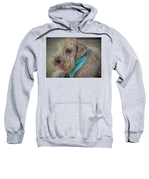 Binkley Sweatshirt