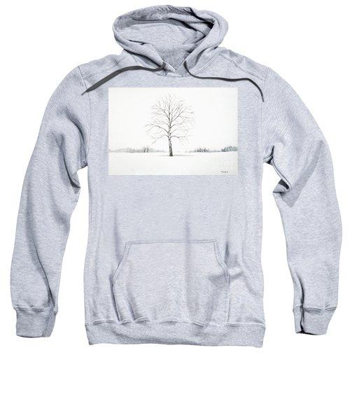 Birch Tree Upon The Winter Plain Sweatshirt