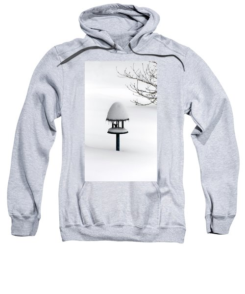 Bird Feeder In Snow Sweatshirt