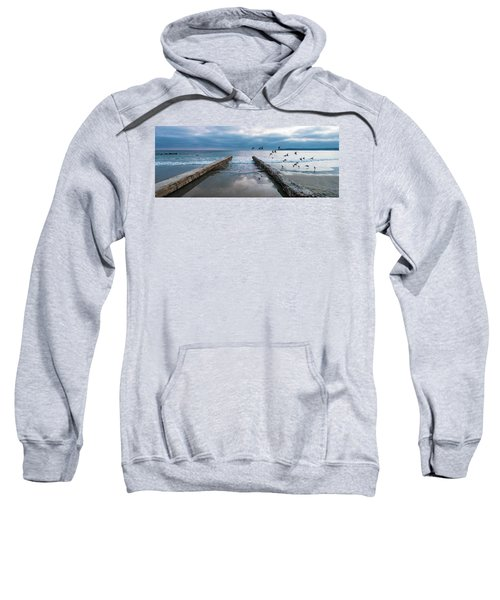 Bird Flight Sweatshirt