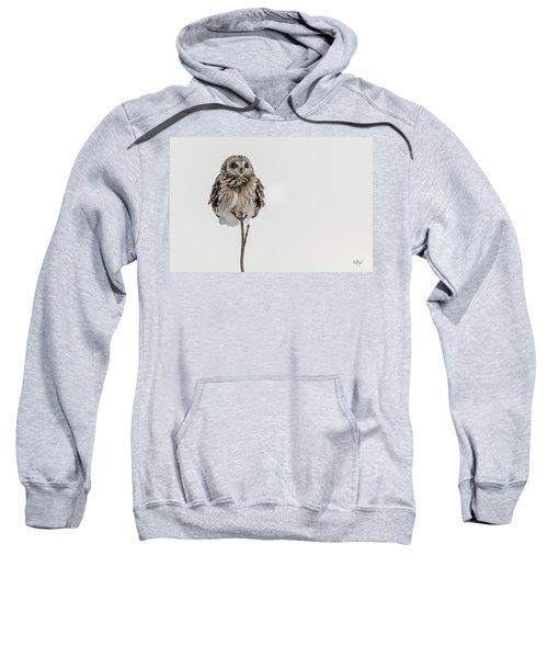 Bird On A Stick Sweatshirt