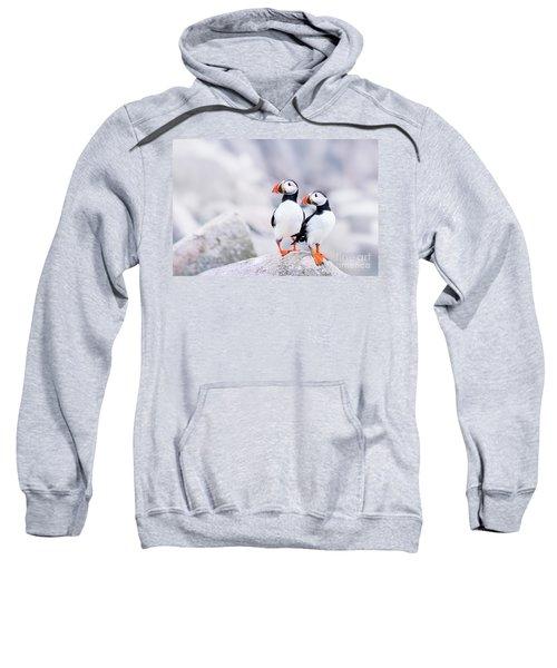 Birdland Sweatshirt