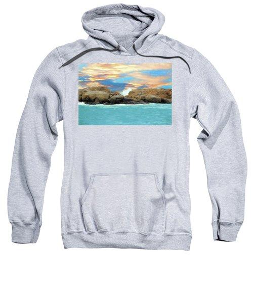Birds On Ocean Rocks Sweatshirt