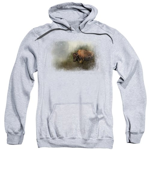 Bison After The Mud Bath Sweatshirt by Jai Johnson