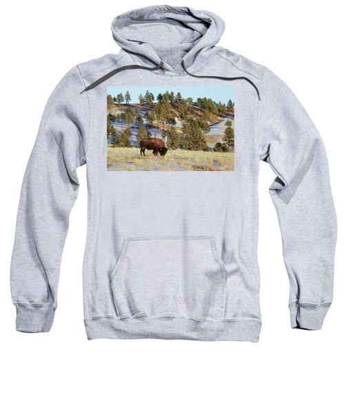Bison In Custer State Park Sweatshirt