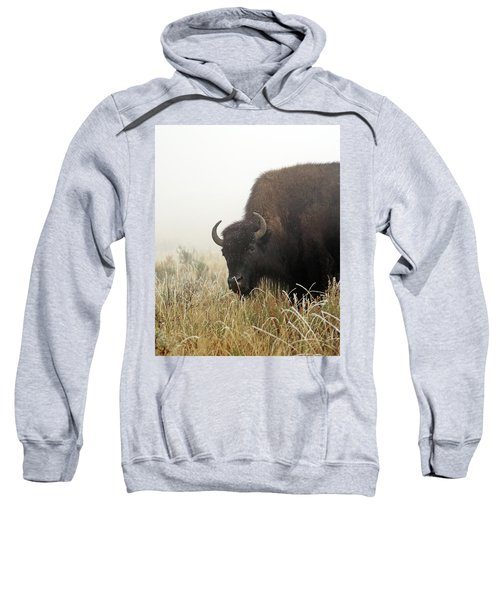 Bison In The Frosty Morning Sweatshirt
