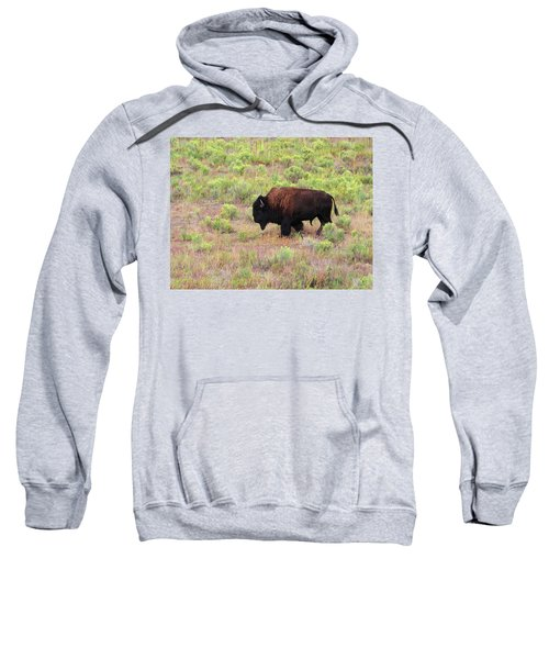 Bison1 Sweatshirt