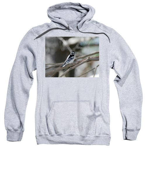 Black And White Bird Sweatshirt