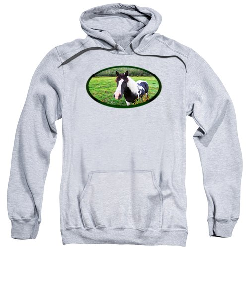 Black And White Horse-natural Setting Sweatshirt