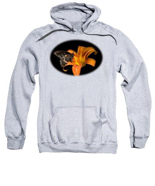 Black Beauty Butterfly Sweatshirt by Christina Rollo