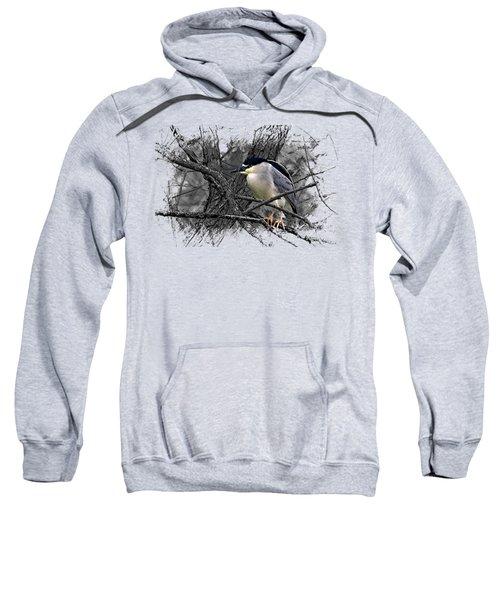 Black Crowned Night Heron 001 Sweatshirt by Di Designs