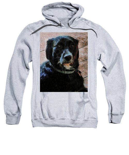 Black Dog Worry Highlights Sweatshirt