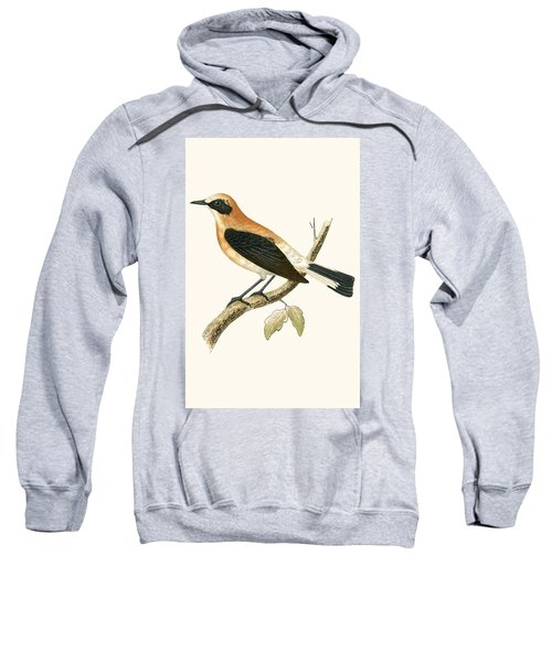 Black Eared Wheatear Sweatshirt by English School