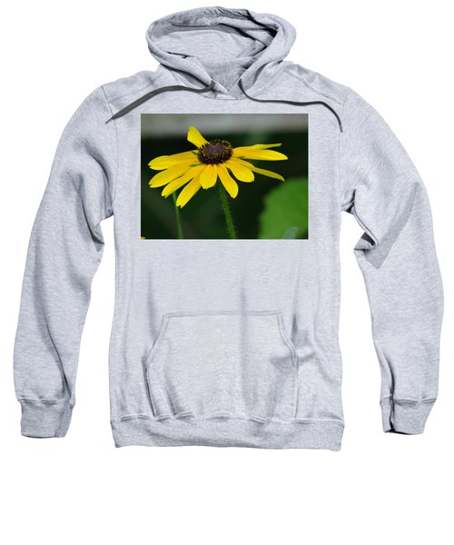Black Eyed Susan Sweatshirt