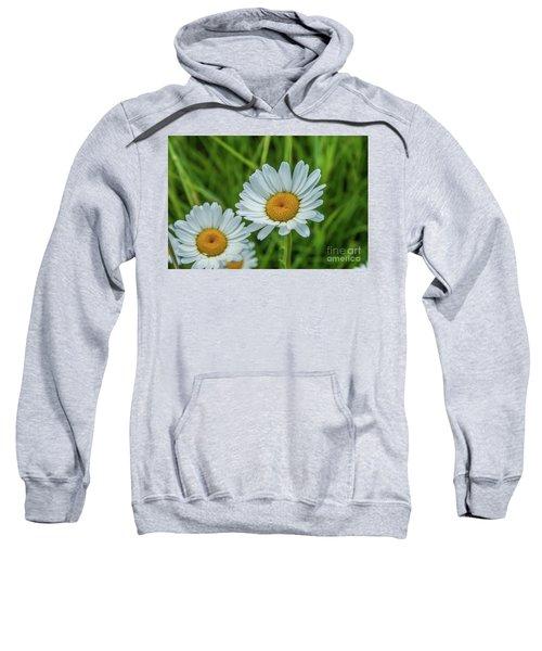 Black-headed Daisy's Sweatshirt