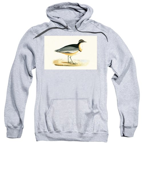 Black Headed Plover Sweatshirt