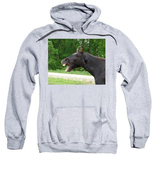 Black Horse Laughs Sweatshirt