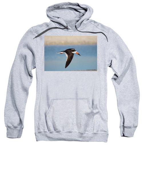 Black Skimmer In Flight Sweatshirt